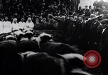 Image of Livestock sale to benefit Red Cross  Denver Colorado USA, 1917, second 9 stock footage video 65675035208