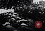 Image of Livestock sale to benefit Red Cross  Denver Colorado USA, 1917, second 10 stock footage video 65675035208