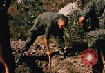 Image of US troops digging foxholes during Operation Big Spring  Vietnam, 1967, second 11 stock footage video 65675035381