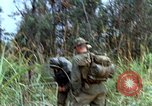Image of US Marines Khe Sanh Vietnam, 1968, second 2 stock footage video 65675035388