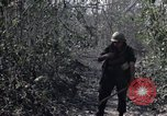 Image of US Army soldiers Binh Duong province South Vietnam, 1967, second 4 stock footage video 65675035396
