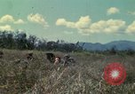 Image of US Marines Da Nang Vietnam, 1968, second 4 stock footage video 65675035398