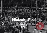Image of Nashua horse Hialeah Florida USA, 1956, second 5 stock footage video 65675035438