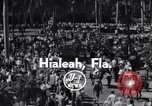 Image of Nashua horse Hialeah Florida USA, 1956, second 6 stock footage video 65675035438