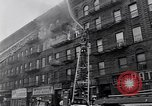 Image of Harlem New York City USA, 1963, second 8 stock footage video 65675035557