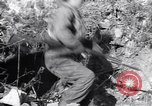 Image of US Army captures enemy bunker in Korean War Korea, 1951, second 1 stock footage video 65675035800