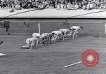 Image of track events between USA and Britain London England United Kingdom, 1936, second 3 stock footage video 65675035856