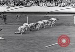Image of track events between USA and Britain London England United Kingdom, 1936, second 4 stock footage video 65675035856