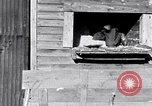 Image of negro workers South Carolina United States USA, 1936, second 8 stock footage video 65675035945