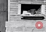 Image of negro workers South Carolina United States USA, 1936, second 10 stock footage video 65675035945