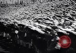 Image of Wars by Germany Germany, 1945, second 6 stock footage video 65675035991