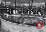 Image of mascots of penguins Philadelphia Pennsylvania USA, 1931, second 7 stock footage video 65675035999