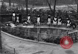 Image of mascots of penguins Philadelphia Pennsylvania USA, 1931, second 10 stock footage video 65675035999