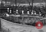 Image of mascots of penguins Philadelphia Pennsylvania USA, 1931, second 11 stock footage video 65675035999