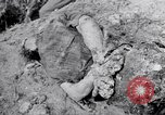Image of dead bodies Belgium, 1944, second 4 stock footage video 65675036056
