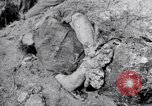 Image of dead bodies Belgium, 1944, second 5 stock footage video 65675036056