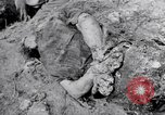 Image of dead bodies Belgium, 1944, second 6 stock footage video 65675036056
