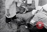 Image of dead bodies Belgium, 1944, second 10 stock footage video 65675036056