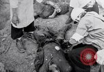 Image of dead bodies Belgium, 1944, second 11 stock footage video 65675036056