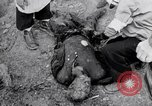 Image of dead bodies Belgium, 1944, second 12 stock footage video 65675036056