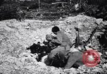 Image of Victory on Guam Guam, 1944, second 12 stock footage video 65675036121