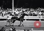 Image of Corn Tassel Derby harness horse race Goshen New York USA, 1944, second 11 stock footage video 65675036126