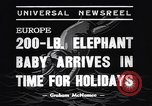 Image of new born baby elephant Europe, 1938, second 6 stock footage video 65675036139