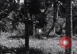 Image of Coast Watcher Bougainville Island Papua New Guinea, 1943, second 9 stock footage video 65675036175