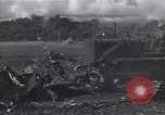 Image of Henderson Field Guadalcanal Solomon Islands, 1944, second 5 stock footage video 65675036195