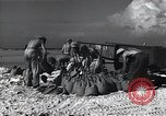 Image of United States Marine Corps base Saipan Northern Mariana Islands, 1944, second 12 stock footage video 65675036247