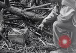 Image of Battle of Iwo Jima Iwo Jima, 1945, second 8 stock footage video 65675036300