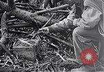 Image of Battle of Iwo Jima Iwo Jima, 1945, second 11 stock footage video 65675036300