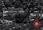Image of Israeli soldiers fight Arab forces Palestine, 1948, second 2 stock footage video 65675036308