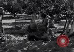 Image of Israeli soldiers fight Arab forces Palestine, 1948, second 3 stock footage video 65675036308