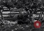 Image of Israeli soldiers fight Arab forces Palestine, 1948, second 4 stock footage video 65675036308