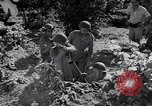 Image of Israeli soldiers fight Arab forces Palestine, 1948, second 9 stock footage video 65675036308