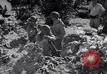 Image of Israeli soldiers fight Arab forces Palestine, 1948, second 10 stock footage video 65675036308