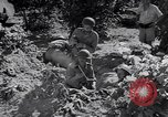 Image of Israeli soldiers fight Arab forces Palestine, 1948, second 12 stock footage video 65675036308