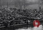 Image of Roosevelt's second inauguration Washington DC USA, 1937, second 9 stock footage video 65675036476