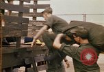Image of 90th Replacement Battalion of United States Army Vietnam, 1970, second 8 stock footage video 65675036486