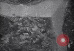 Image of bombing by Japanese bombers Chungking China, 1941, second 11 stock footage video 65675036556