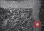 Image of bombing by Japanese bombers Chungking China, 1941, second 12 stock footage video 65675036556