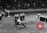 Image of 68th National Horse Show New York City, 1956, second 9 stock footage video 65675036660
