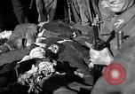 Image of death of Mussolini Milan Italy, 1945, second 9 stock footage video 65675036688