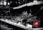 Image of zoo and flower market Japan, 1900, second 9 stock footage video 65675036769