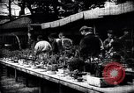Image of zoo and flower market Japan, 1900, second 12 stock footage video 65675036769