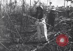 Image of Fidel Castro Cuba, 1963, second 8 stock footage video 65675036873