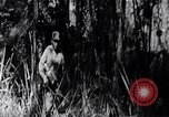 Image of Bay of Pigs invasion Bay of Pigs Cuba, 1961, second 2 stock footage video 65675036876