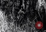Image of Bay of Pigs invasion Bay of Pigs Cuba, 1961, second 3 stock footage video 65675036876