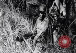 Image of Bay of Pigs invasion Bay of Pigs Cuba, 1961, second 5 stock footage video 65675036876